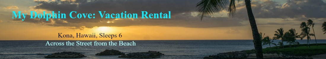 My Dolphin Cove Vacation Renta;